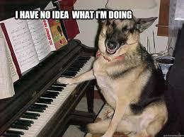 Piano Memes - dog plays piano memes quickmeme