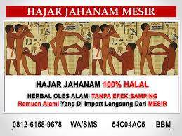 0812 6158 9678 wa sms obat herbal pria obat tahan lama obat