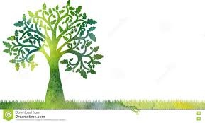 Oak Tree Drawing Silhouette Of Oak Tree With Leaves And Grass Stock Illustration