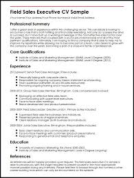 Resume Core Qualifications Examples by Field Sales Executive Cv Sample Myperfectcv