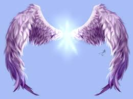 asas digital wings digital angel anjo roxo purple pts