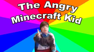 Thrown Out Window Meme - what is get the f outta my room i m playing minecraft meme