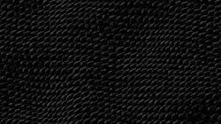 free background wallpaper 1920x1080 1579