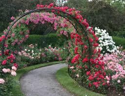 Trellis Arch Contemporary Wooden Garden Arch 17 Best 1000 Ideas About Garden
