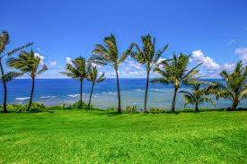 sealodge kauai vacation rentals affordable oceanfront views