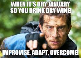Cool And Funny Memes - image tagged in memes funny memes bear grylls cool funny imgflip