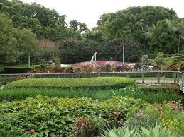 coastal garden design garden design ideas