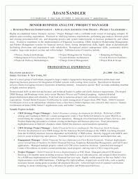 Business Analyst Objective In Resume Resume Samples Business Analyst Business Systems Analyst Resume