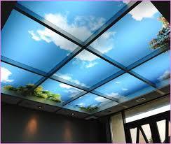 Decorative Drop Ceiling Tiles Goenoeng For Ideas 8