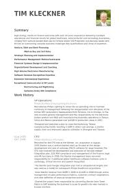 Operations Resume Examples by Vp Operations Resume Samples Visualcv Resume Samples Database