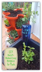 Diy Self Watering Herb Garden Diy Self Watering Bottle To Keep Your Garden Green