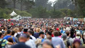 the festival lawyer what to do if the stop you at a