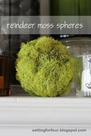 Moss Vase Filler 106 Best Decorating With Moss Images On Pinterest Bell Jars