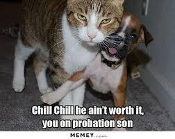 anger memes funny anger pictures memey com