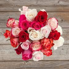 valentines roses roses valentines day startupcorner co