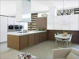 100 kitchen cabinets company kitchen cabinet home kitchen