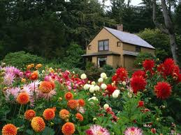 Free Backyard Landscaping Ideas by Small Yard Gardens Superb Landscaping Ideas For Small Yards Free