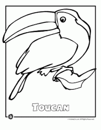 endangered animals coloring pages animals north america