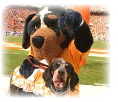 Tennessee Vols Rug 17 Best Images About My Room On Pinterest Tennessee Loyalty And