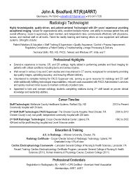 cio resume technology resume samples resume examples templates how to make