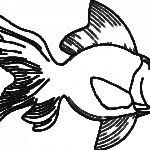 clown fish coloring pages nemo lets colouring gekimoe u2022 102599
