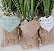 plant wedding favors plant favors for weddings