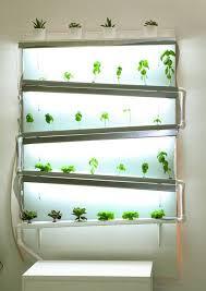 best 25 indoor hydroponics ideas on pinterest aquaponics diy