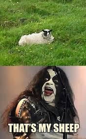 Black Metal Meme - black metal memes home facebook
