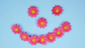 4k stop motion animation smiling face made out of flowers motion