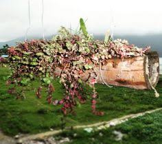 Ikea Flatpack Vertical Garden Ikea Creates Flatpack Garden For Those With Limited Space To Grow
