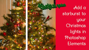 how to light a christmas tree stylist and luxury twinkle light christmas tree 20 ways to decorate