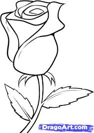Flower Drawings Black And White - how to draw a white rose step by step flowers pop culture free