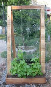 What Vegetables Need A Trellis Build A Trellis Using Sturdy Materials Like 2 X 4 U0027s And Hardware