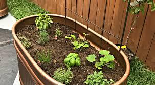 herb planter diy plant wonderful galvanized water trough tub 58 bathtub ideas