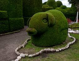 Horse Topiary Tulcan To Ibarra Fromalaskatobrazil
