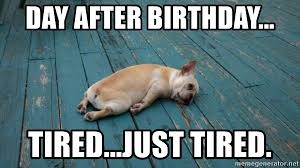 Day After Birthday Meme - day after birthday tired just tired tired tired dog meme