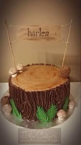Best 25 Tree Stump Cake Ideas On Pinterest Lumberjack Cake