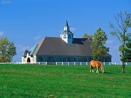 known places donamire horse farm lexington kentucky desktop
