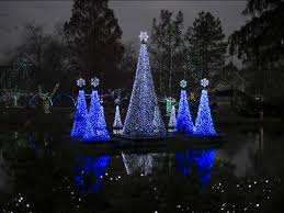 columbus zoo christmas lights wildlights at the columbus zoo and aquarium oh ohio find it here