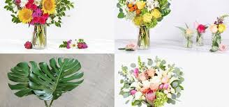 affordable flowers where to get affordable flowers in singapore brought up 2