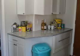 kitchen trash can storage cabinet kitchen amazing kitchen trash can replacement vibrant bin