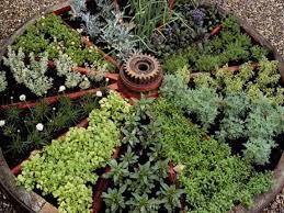 Kitchen Herb Garden Design Beautiful Vertical Vegetable Garden Design With