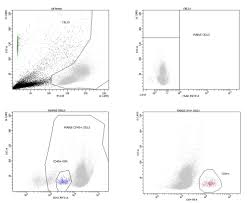 Mesenchymal Stromal Cells Mscs Induce Ex Vivo Proliferation And