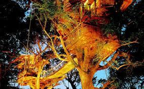 treehouse hotel pennsylvania world u0027s coolest tree house hotels travel leisure