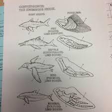 greeley howard u0027s biology class 2016