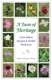 native american medicinal plants 380 best native american herbal remedies images on pinterest