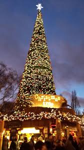 best 25 winter hyde park ideas on winter