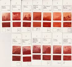 jane blundell artist watercolour comparisons 4 burnt sienna