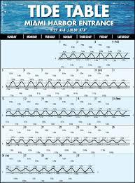 miami edition fishing reports boating u0026 outdoors coastal