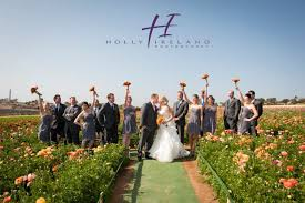 wedding flowers san diego carlsbad ca flower field wedding photos with and tony